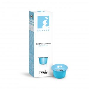 Coffee & Tea Selections Inc.